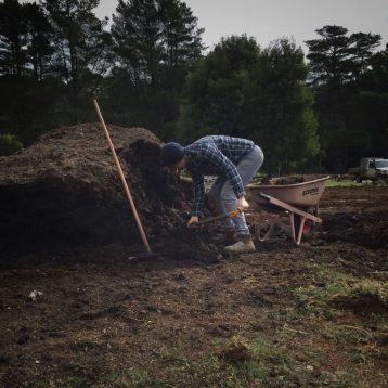 shoveling compost - fleurs de lyonville